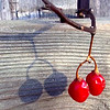 """FEB.9,2012   The Shadow challenge for Paula!    It's an early post due to my work schedule. I've been working on these captures all week and I love some of neighborhood homes with tree shadows on them , but my """"red"""" always wins out for me."""
